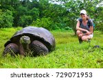 Stock photo galapagos giant tortoise with young woman blurred in background sitting next to it on santa cruz 729071953
