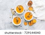 fresh homemade soup | Shutterstock . vector #729144040