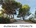 along the leucosia mermaid...   Shutterstock . vector #729146176