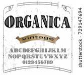 vintage font typeface vector... | Shutterstock .eps vector #729147694