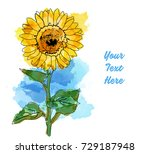 Watercolor Sunflower For...