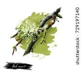 digital art illustration of oak ... | Shutterstock . vector #729197140