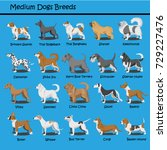 cartoon dogs characters meduim...   Shutterstock .eps vector #729227476