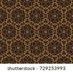 modern stylish texture....   Shutterstock . vector #729253993