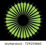 chili icon | Shutterstock .eps vector #729254860