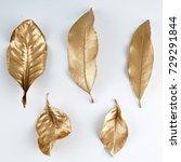set of gold leaves.... | Shutterstock . vector #729291844