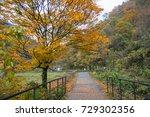 dakigaeri valley in autumn ...   Shutterstock . vector #729302356
