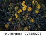 aerial view of colorful fall... | Shutterstock . vector #729350278