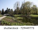 park in bad pyrmont  hessen ... | Shutterstock . vector #729449773
