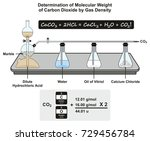 determination of molecular... | Shutterstock .eps vector #729456784