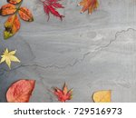 beautiful colored autumn leaves ...   Shutterstock . vector #729516973