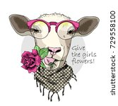 vector sheep with pink glasses  ... | Shutterstock .eps vector #729558100