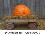 Large Pumpkin In A Old Wagon