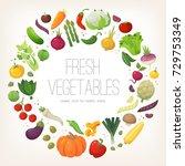 fresh colorful vegetables... | Shutterstock .eps vector #729753349