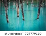 Small photo of A few bare tree trunks rise out of the electric-blue waters of Aoi-ike, or Blue Pond, in Hokkaido, Japan; the unusual teal color is caused by colloidal aluminum hydroxide