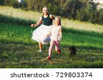 two little girls having fun... | Shutterstock . vector #729803374