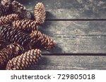pine cones with copy space ... | Shutterstock . vector #729805018