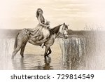 woman in a dress on a horse ... | Shutterstock . vector #729814549