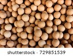 roasted chickpea | Shutterstock . vector #729851539