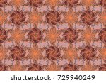 floral seamless pattern with... | Shutterstock . vector #729940249