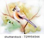 a bird on a branch | Shutterstock . vector #729954544
