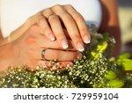 wedding rings and hands | Shutterstock . vector #729959104