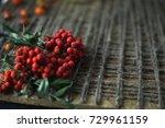 rowan on a wooden background... | Shutterstock . vector #729961159