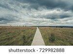 wooden boardwalk through the... | Shutterstock . vector #729982888