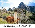 machu pichu unesco site | Shutterstock . vector #730009219