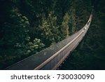 capilano suspension bridge in... | Shutterstock . vector #730030090