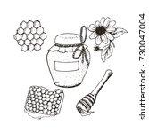 honey in jar and honeycombs... | Shutterstock .eps vector #730047004