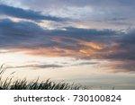 beautiful nice blue and orange... | Shutterstock . vector #730100824