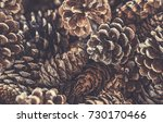 full frame pile of brown dried...   Shutterstock . vector #730170466