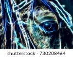 Beautiful Horse Eye  Closeup...