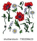 vector elements of red poppy ... | Shutterstock .eps vector #730208623