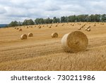 Hay Bales On The Field After...