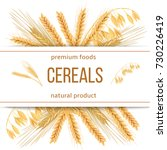 wheat  barley  oat and rye. 3d... | Shutterstock .eps vector #730226419