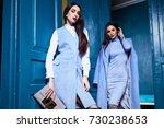 beautiful sexy woman lady wear...   Shutterstock . vector #730238653