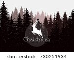 hand drawn vector nature... | Shutterstock .eps vector #730251934