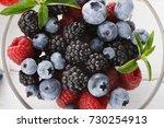 assorted garden and wild... | Shutterstock . vector #730254913