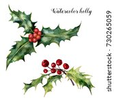 watercolor holly set. hand... | Shutterstock . vector #730265059