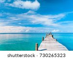 living is easy path filled with ...   Shutterstock . vector #730265323