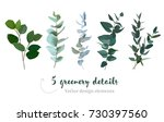 mix of herbs and plants vector... | Shutterstock .eps vector #730397560