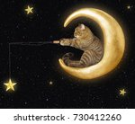The Cat Sits On The Moon And...