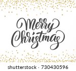 merry christmas card with hand... | Shutterstock .eps vector #730430596