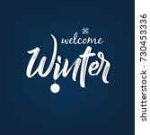 winter season design background ... | Shutterstock .eps vector #730453336