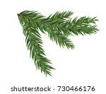 green lush spruce or pine... | Shutterstock .eps vector #730466176