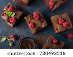 raspberry brownies served  with ... | Shutterstock . vector #730493518