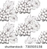 grapes harvest line art vector...