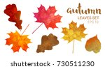 autumn leaves set  isolated on... | Shutterstock .eps vector #730511230